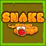 Snake Game
